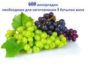 600 виноградин и бутылка вина